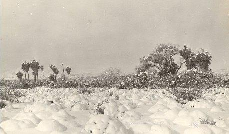 Heavy snow in 29 Palms -January 1949
