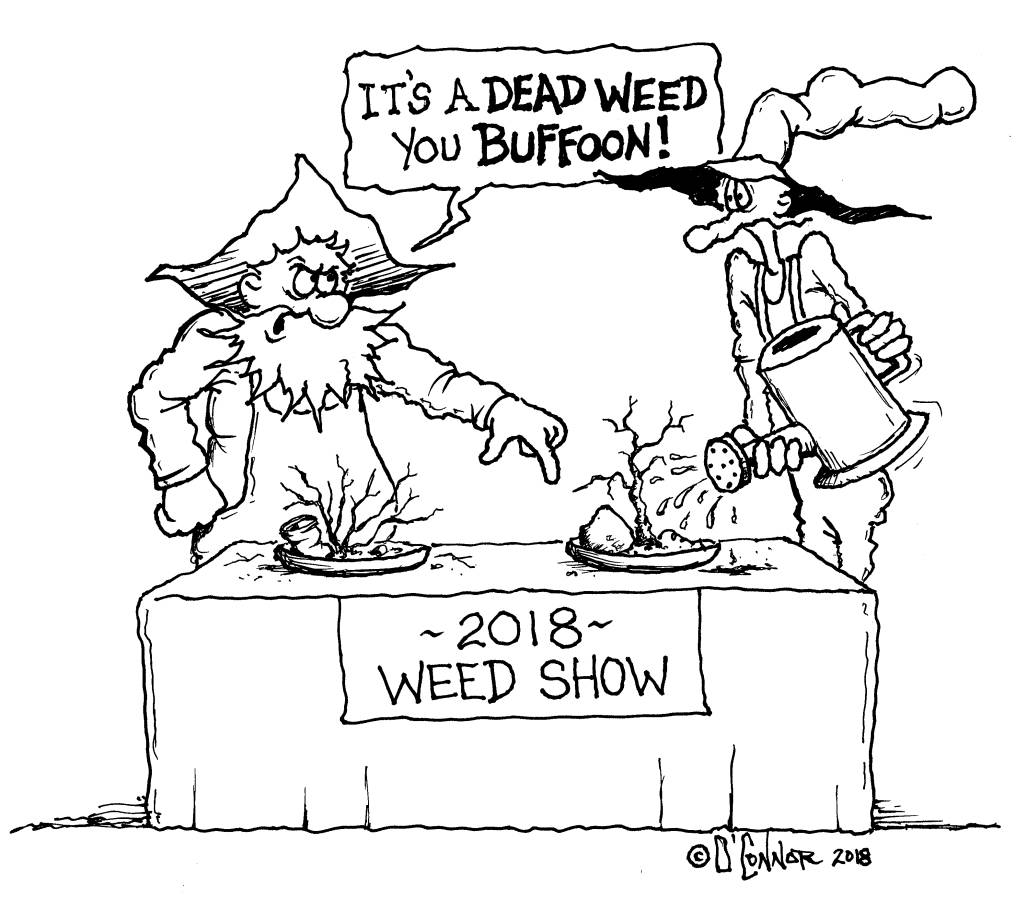 Weed Show Graphic